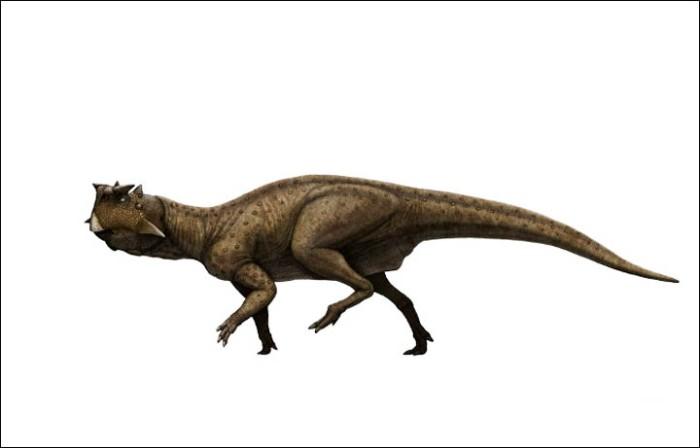 standard_psittakosaurus_2]