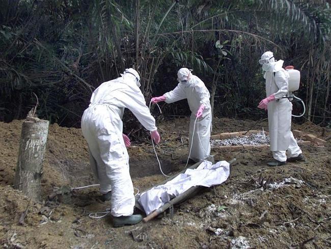 ebolaras